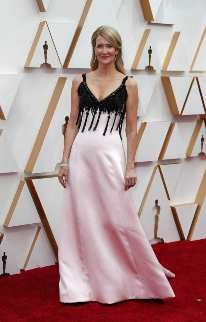 Oscar 2020: la alfombra roja, en su totalidad 32