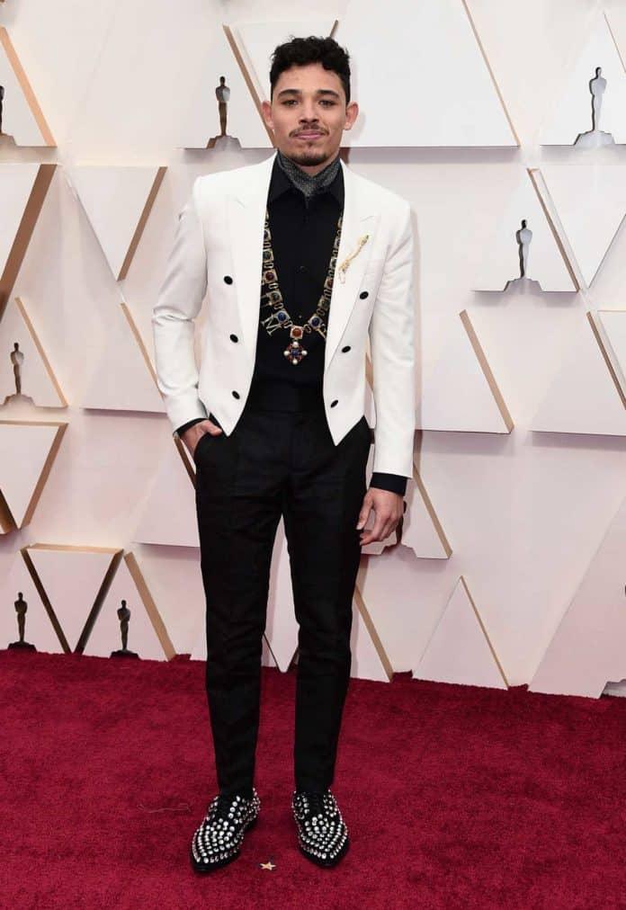 Oscar 2020: la alfombra roja, en su totalidad 59