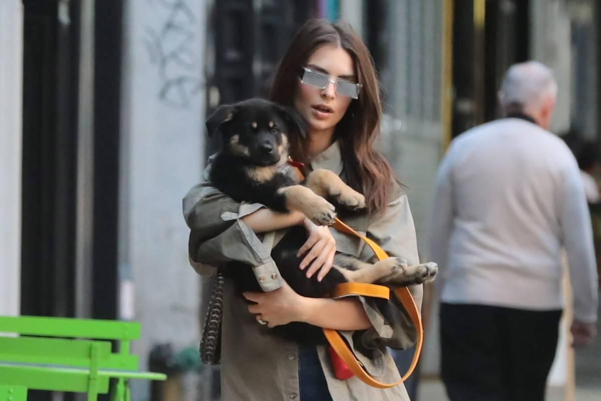 Kendall con su perro por la calle.