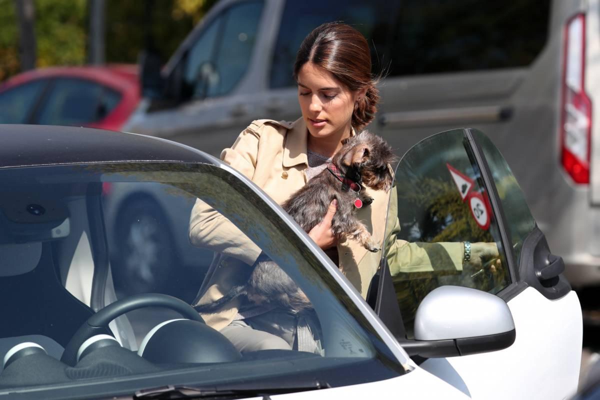 Sofía Palazuelo con su cachorro, él se mete en su coche.