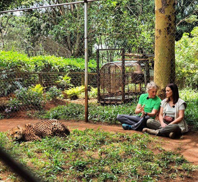Paula Echevarría y Miguel Torres viven un emocionante viaje a África 12
