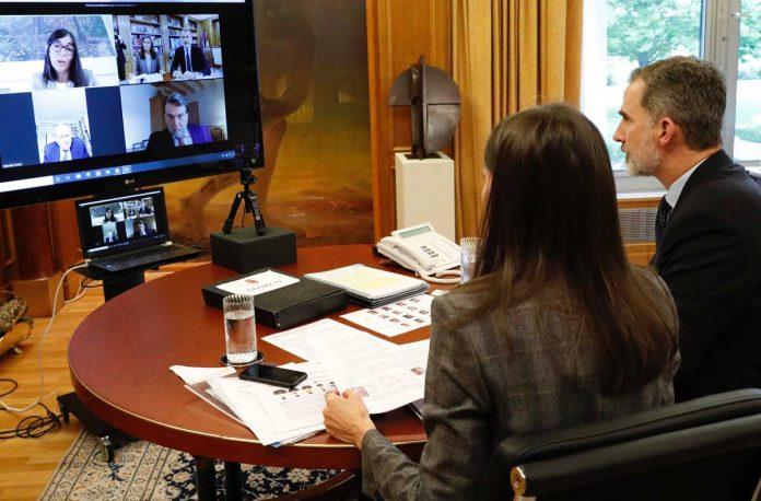 Todas las claves del manual de videoconferencia según Letizia 14