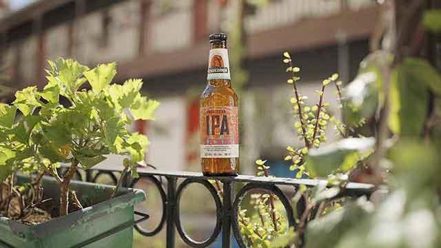 Cerveza, el invitado perfecto 4