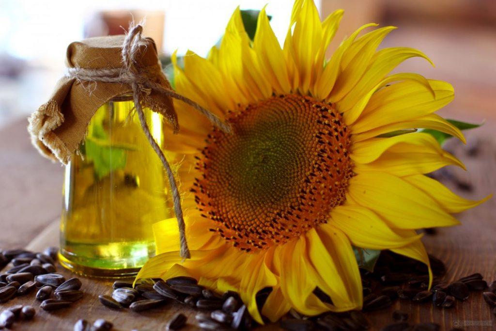 El aceite de girasol también tiene nutrientes muy interesantes.