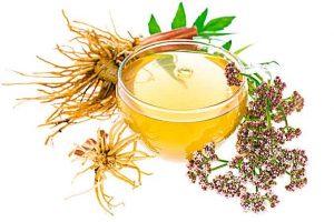 4 infusiones de hierbas para sentirse bien 4