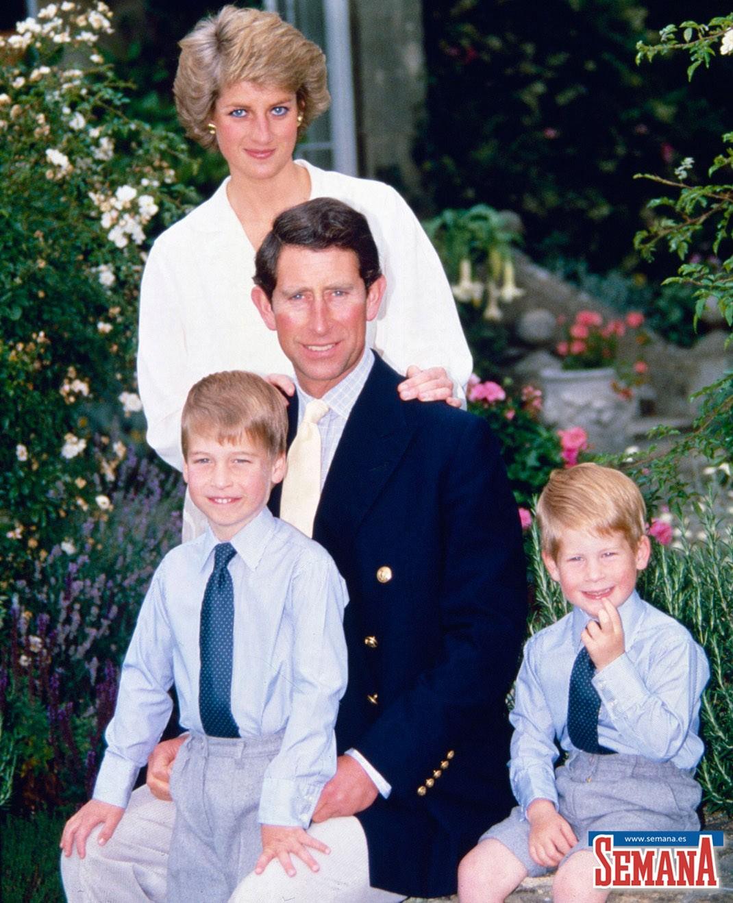 Uso de drogas y problemas mentales: el infierno del príncipe Harry para superar la muerte de su madre 6